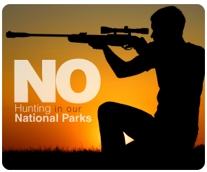Say NO to hunting in NSW National Parks